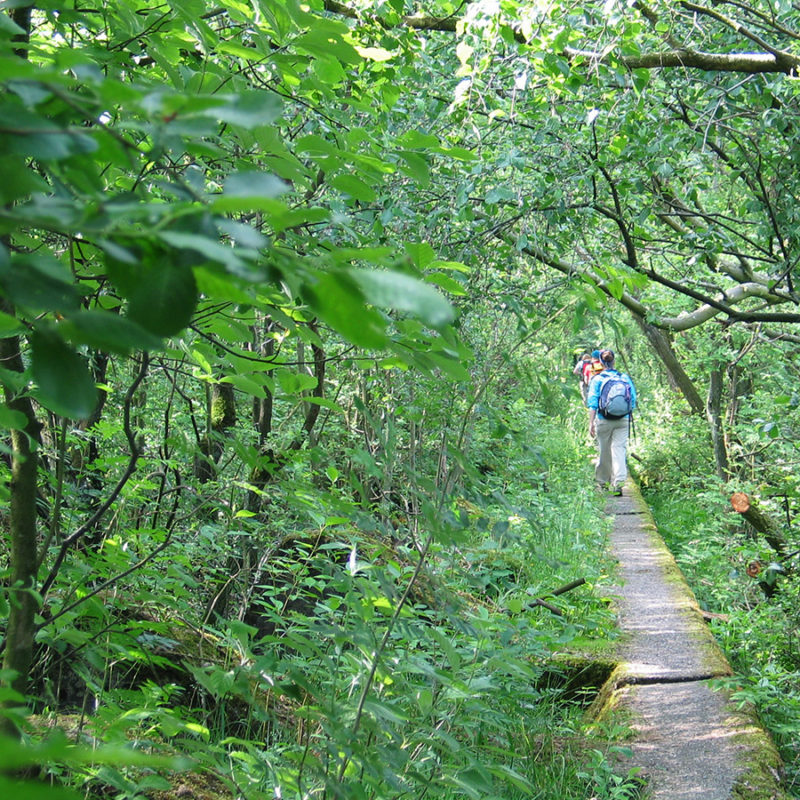 walking the line WestWall Wanderung